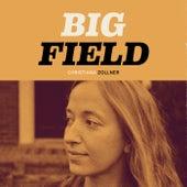 Big Field de Christiana Zollner