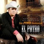 Jerarquia de Corridos con Power Sinaloense! (Edited Version) by El Potro De Sinaloa
