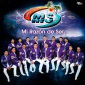 Mi Razón de Ser by Banda Sinaloense
