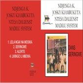 Seringwe by Various Artists