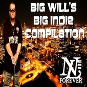 Big Will's Big Indie Compilation von Various Artists