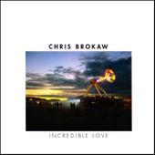 Incredible Love by Chris Brokaw