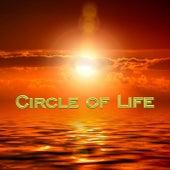 Circle of Life von Dean Whitcher