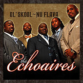 Ol' Skool - Nu Flava by The Echoaires