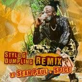 Dumpling (Remix) de Stylo G