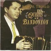 Anibal Troilo - Quejas de bandoneon by Anibal Troilo