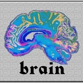 Brain de Remi