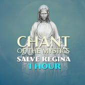 Salve Regina (1 Hour Chant of the Mystics) von Patrick Lenk