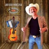 Un Vaquero Desigual de Javier Molina