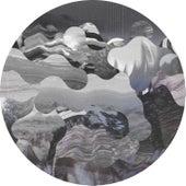 Under My Skin (Remixes) von Shades of Gray