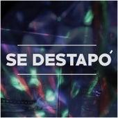 Se Destapó by Más Que Uno