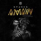 AMAW (African man African woman) de Sparks