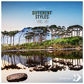 Different Styles Vol.10 by Various Artists