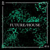 Future/House #14 von Various Artists