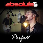 Perfect by Absolute5
