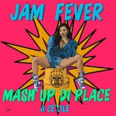 Mash up Di Place by Jam Fever