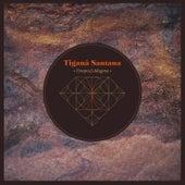 Tempo & Magma von Tiganá Santana