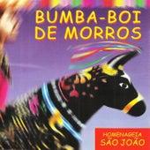 Bumba-Boi de Morros Homenageia São João de Vários Artistas