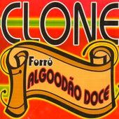 Clone by Forró Algodão Doce