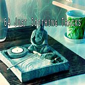 64 Just Soothing Tracks von Lullabies for Deep Meditation