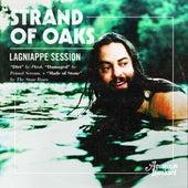 Aquarium Drunkard's Lagniappe Session by Strand Of Oaks