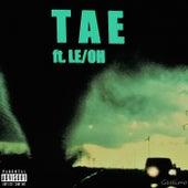 Slow Your Roll von Tae