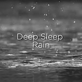 Deep Sleep Rain by Rain Sounds