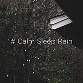 # Calm Sleep Rain by Rain Sounds