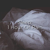 Sleep: 1 Hour Of Rain by Rain Sounds