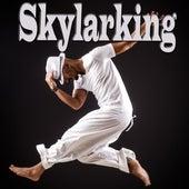 Skylarking by Various Artists