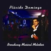 Broadway Musical Melodies de Various Artists