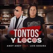 Tontos y Locos de Andy Andy