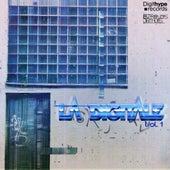 La Digitale, Vol.1 de Various Artists