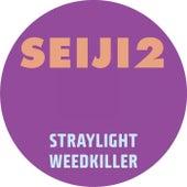 Seiji2 by Seiji