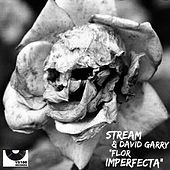 Flor Imperfecta by Stream