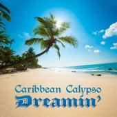 Caribbean Calypso Dreamin' de Various Artists