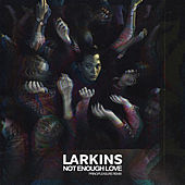 Not Enough Love (Principleasure Remix) de The Larkins