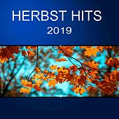 Herbst Hits 2019 von Various Artists