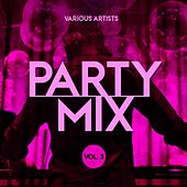 Party Mix, Vol. 3 von Various Artists
