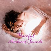 Peaceful Ambient Sounds von Various Artists