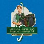 Steirische Sänger- und Musikantentreffen 24 - Echte Volksmusik Livemitschnitt by Various Artists