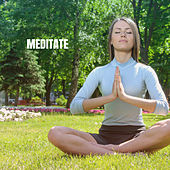 Meditate de Best Relaxing SPA Music