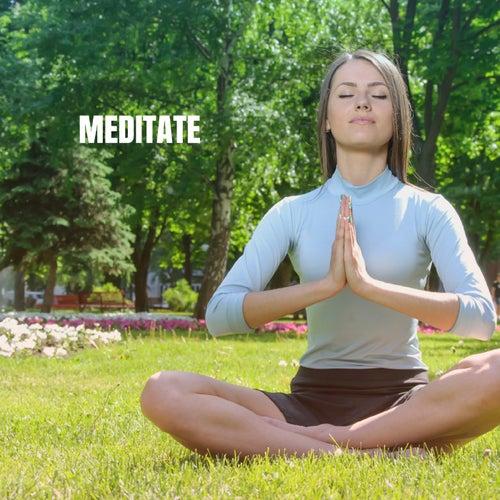 Meditate de Best Relaxing SPA Music