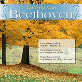 Ludwig van Beethoven: Piano Sonata No.4 in E-Flat Major, Op. 7; Piano Sonata No.5 in C Minor, Op. 10 No.1; Piano Sonata No.8 in C Minor, Op. 13