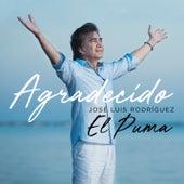 Agradecido von José Luís Rodríguez