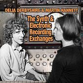 The Synth And Electronic Recording Exchanges by Delia Derbyshire