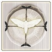 White Moth de White Moth