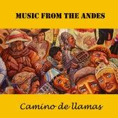 Music from the Andes: Camino de Llamas de Los Lobos