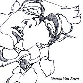 I'm Giving Up On You de Sharon Van Etten