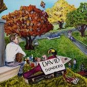 Laying at Your Feet de David Dondero